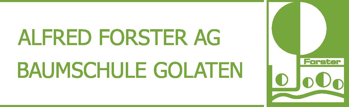 Alfred Forster AG